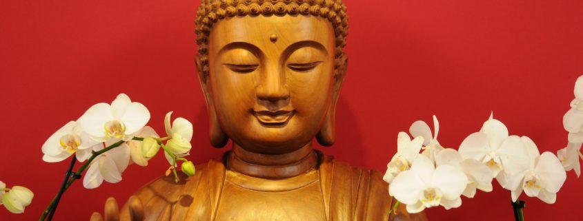 Buddha in the dharma room